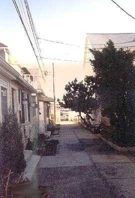 Alleys_sheepshead_41