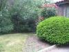 457-lawn1_