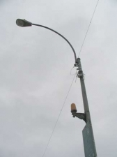 coney2006b