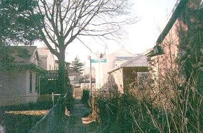Alleys_sheepshead_04