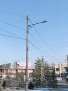 46-lamp_