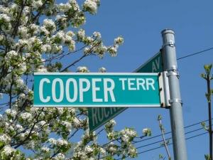66-cooper-terrace