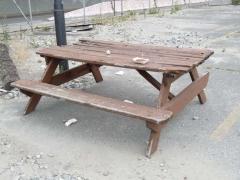 11-picnic