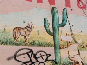 61-santafe-coyote