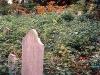 cemeteries_ichabodsleepshere_08