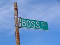 17-boss_