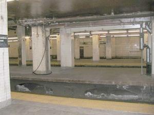 07-platform