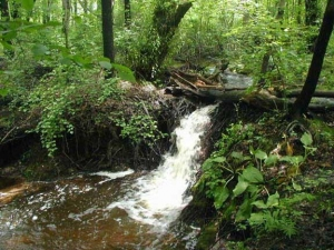 claypitwaterfall