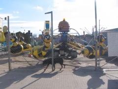 08-astroland-bee_