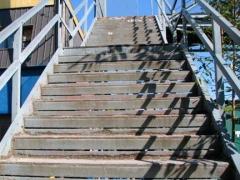 61-scott_-steps_