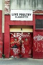 bm-poultry