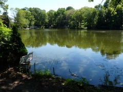 45-bradys-pond_