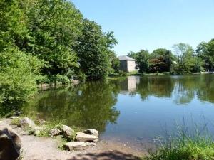 44-bradys-pond_