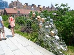 51-birdhouses