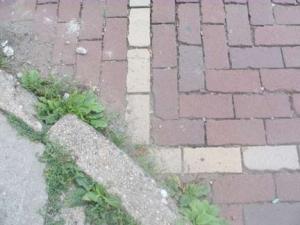 crosswalk3