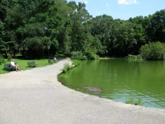 12-tillypark
