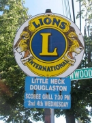17-lions_