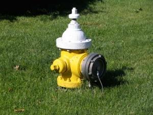 31-nassau-hydrant