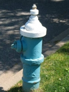 16-81-hydrant
