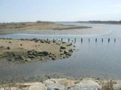 marinepark3