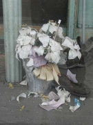 vernon.51.flowers