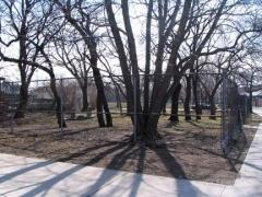 44-cemetery