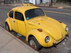 12-pitkin-penn_-bug_