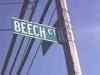 beech4