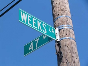 40-weeks_-sign_