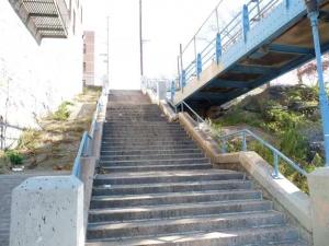 11-ped_-bridge