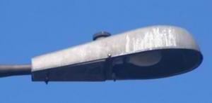 asserlevyparklamp2