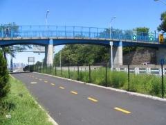 pedbridge1