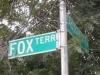 foxterrace2
