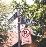tulfan1-copy