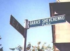 taras5