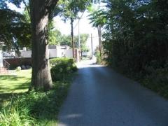 sandhill3
