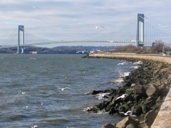08-bridge-gulls_