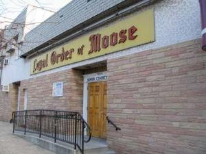 45-moose2_