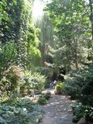 25-garden