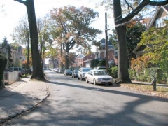 ash-avenue-waldheim1