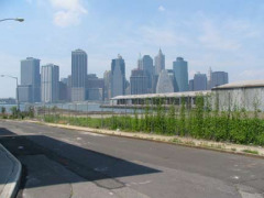 10-skyline-montague