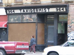 53-taxidermist1