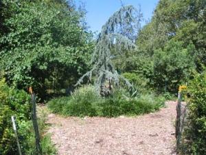 15-lief_-secret-garden