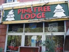 07-pinetree-35