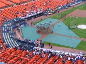 batting-cage1_