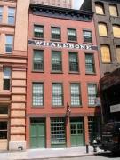 29-whalebone-duane_