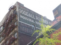 65-goodall