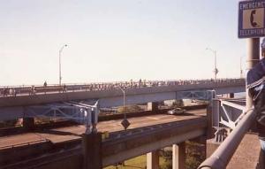 vz1989g