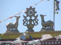 goldbuddha2