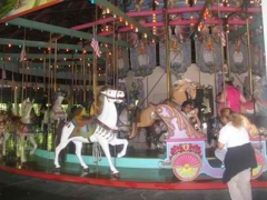 fpcarousel3